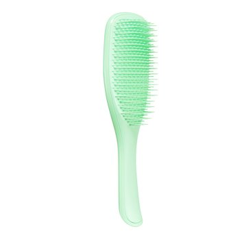 TANGLE TEEZER WET DETANGLER NEON MINT
